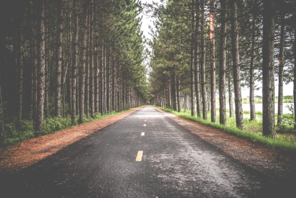 Image of a road in an article about a journey