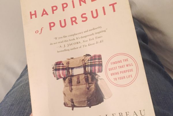 Image of the book The Happiness of Pursuit
