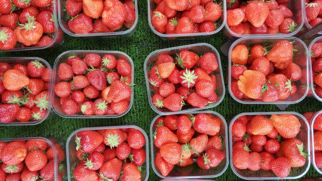 Image of Strawberries for Article about Healthy Meals